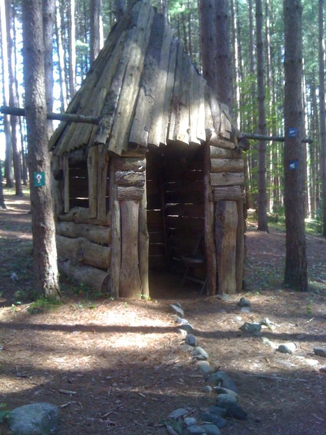 Log elf house